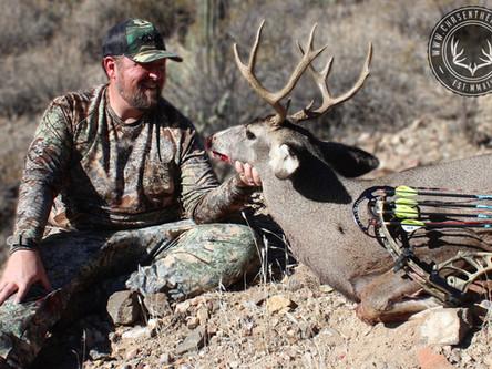 Arizona Archery Deer: OTC Hunts