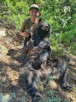 Arizona OTC rifle black bear 12