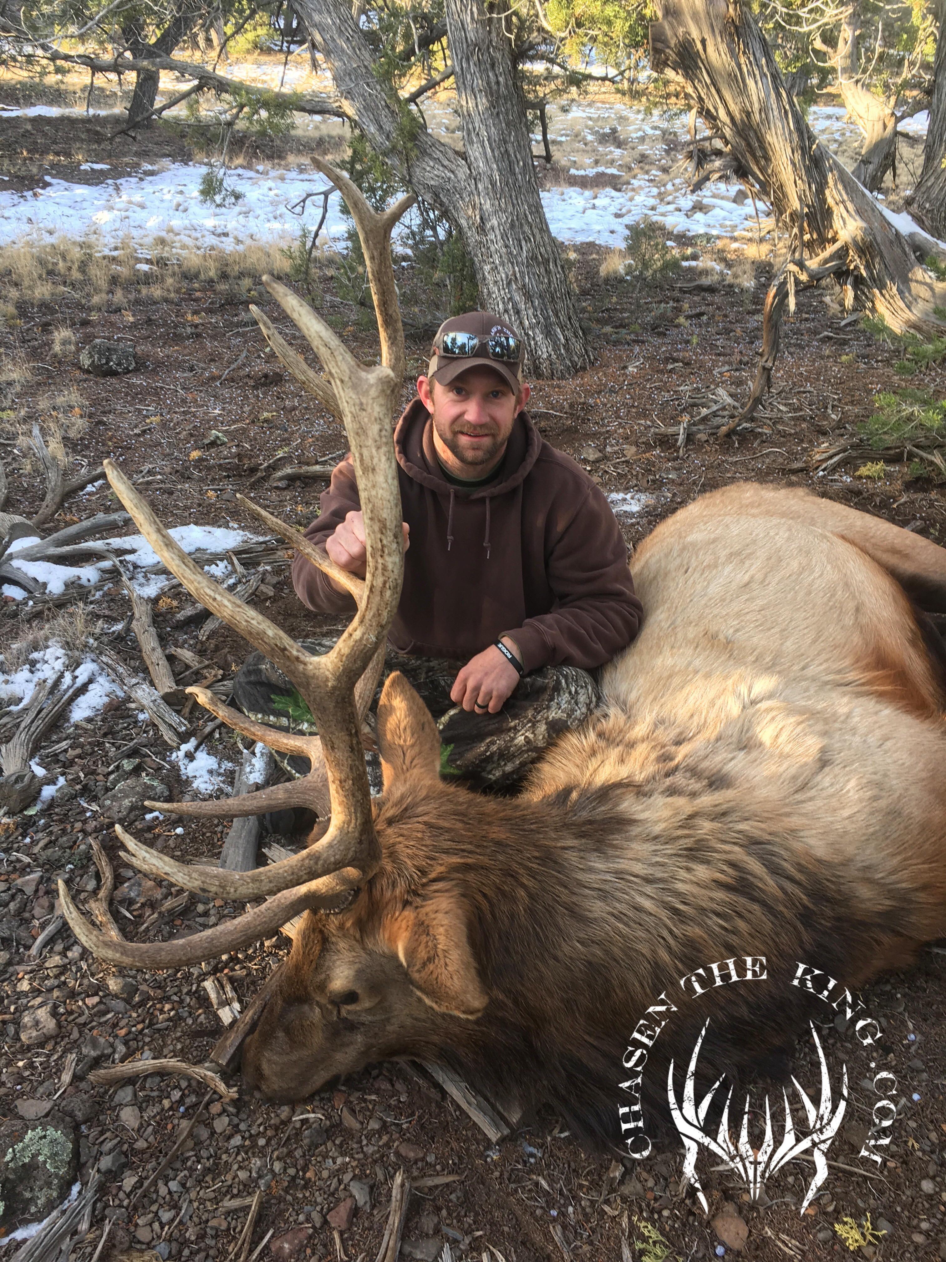 Unit 8 late season rifle bull elk 2