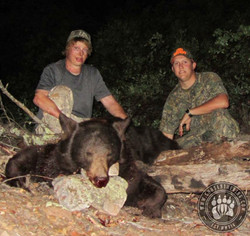 Arizona OTC rifle black bear 18