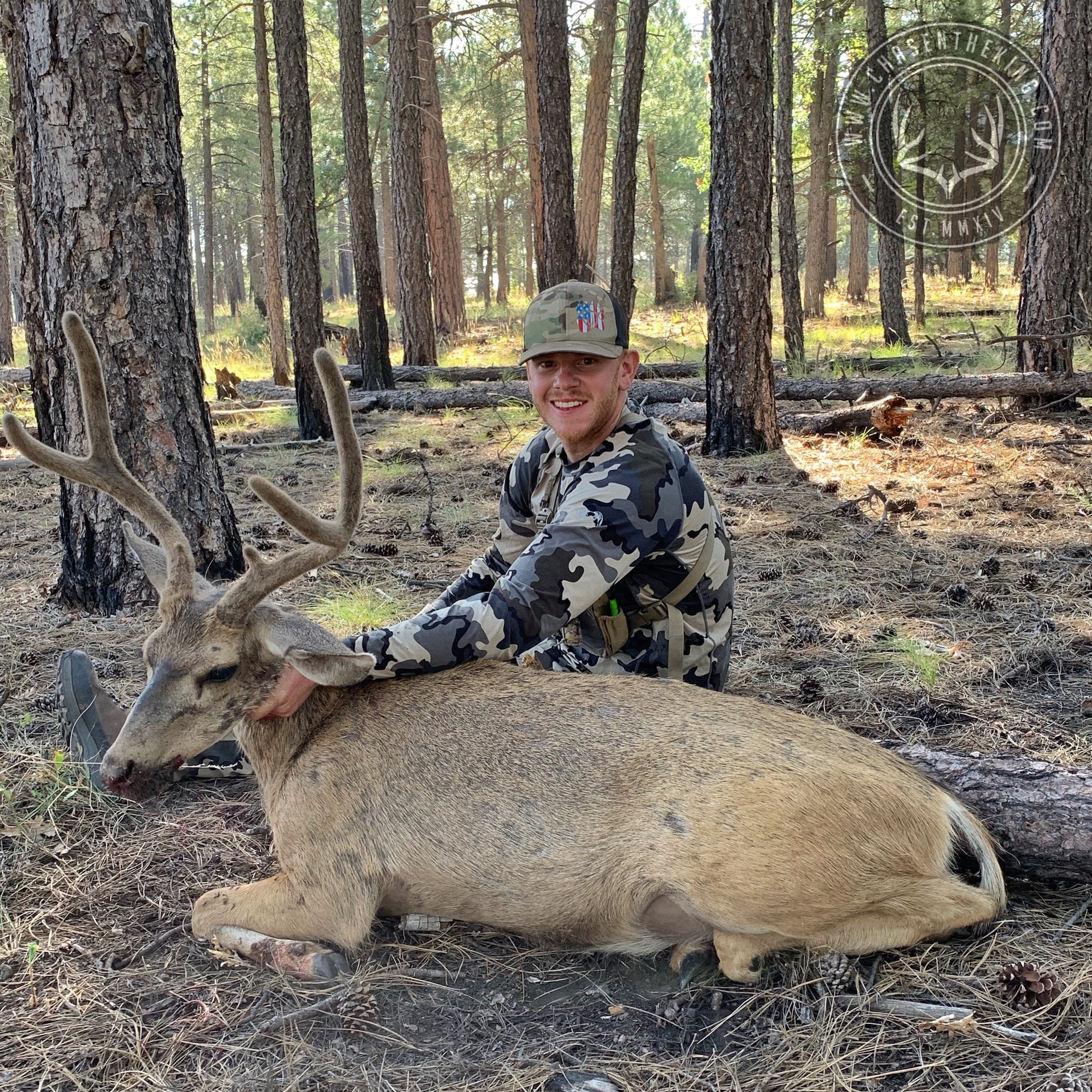 Arizona OTC archery mule deer 10