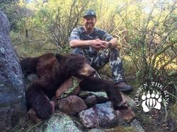 Arizona OTC rifle black bear 53
