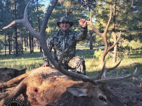 5BS / 5BN Early Archery Bull Elk: Hunt Overview