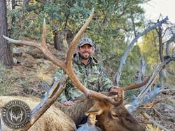 Unit 23 late season rifle bull elk 1
