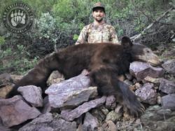 Arizona OTC rifle black bear 56