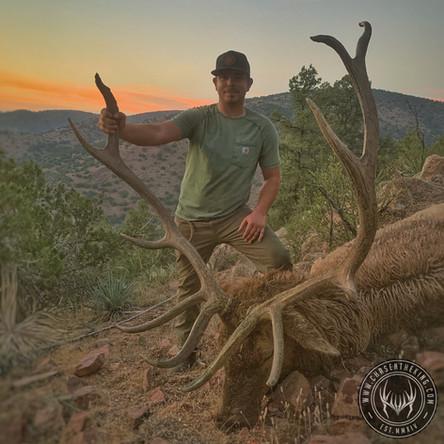 The Gate Keeper: 22S Muzzleloader Bull Elk