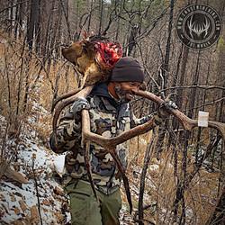 Unit 5A late season rifle bull elk 5