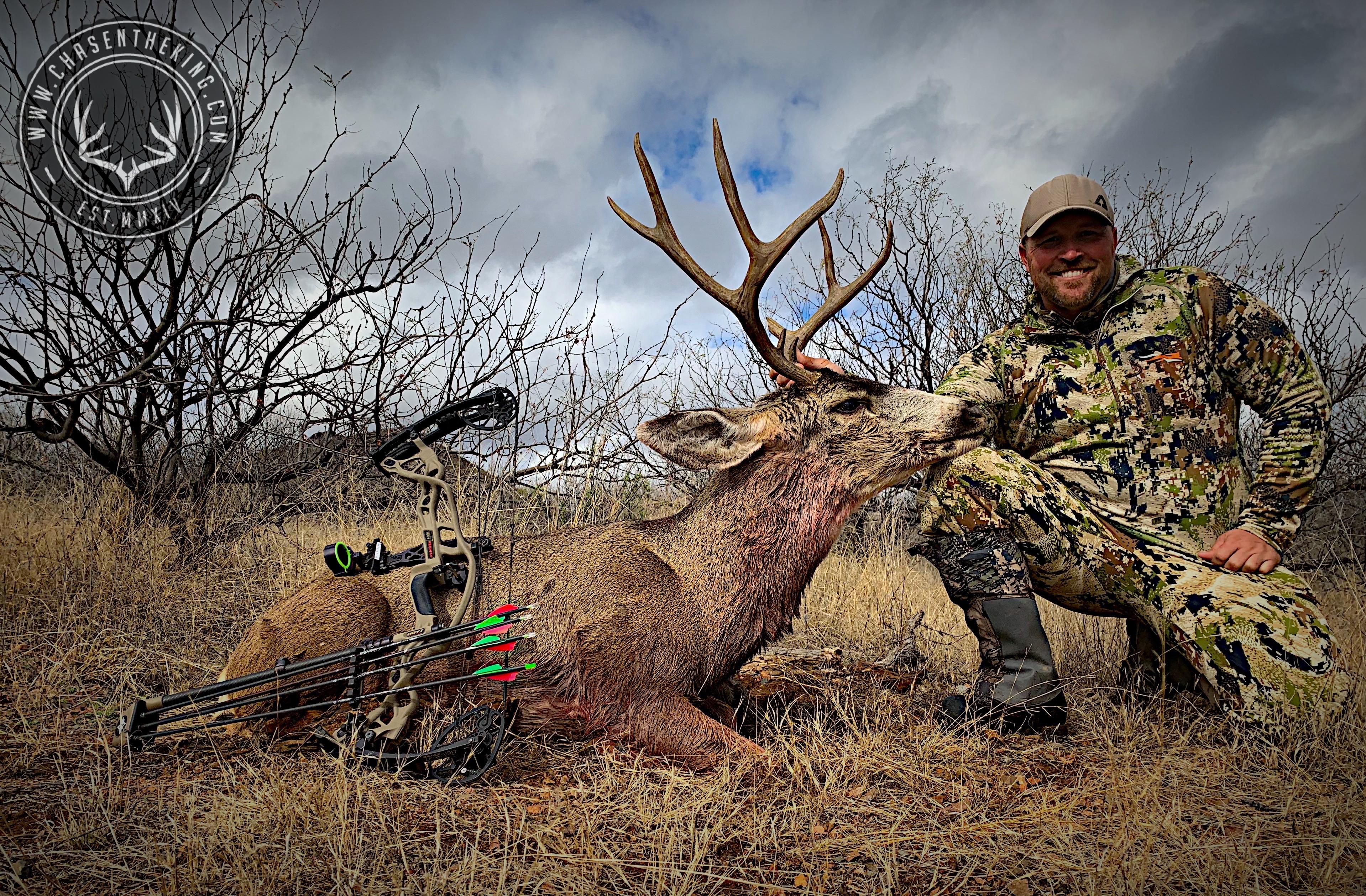 Arizona OTC archery mule deer 28