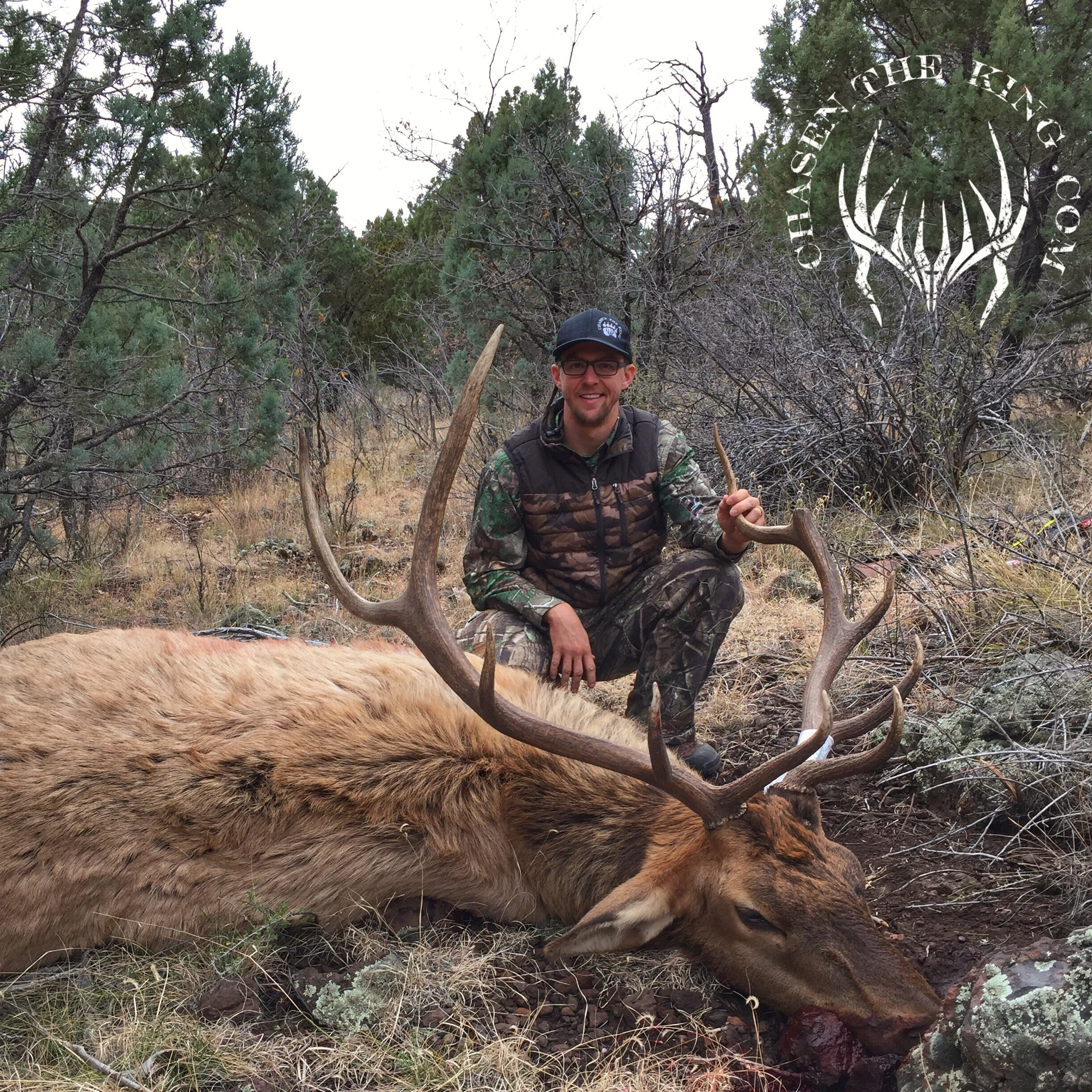 Unit 8 late season rifle bull elk 1