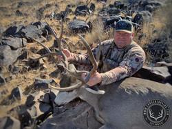 39-41 Desert Mule Deer 3