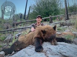 Arizona OTC rifle black bear 65