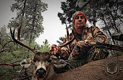 Arizona OTC archery mule deer 14