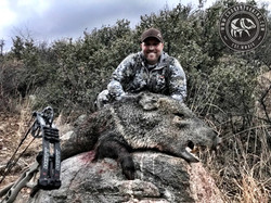 Arizona Javelina Hunt 16