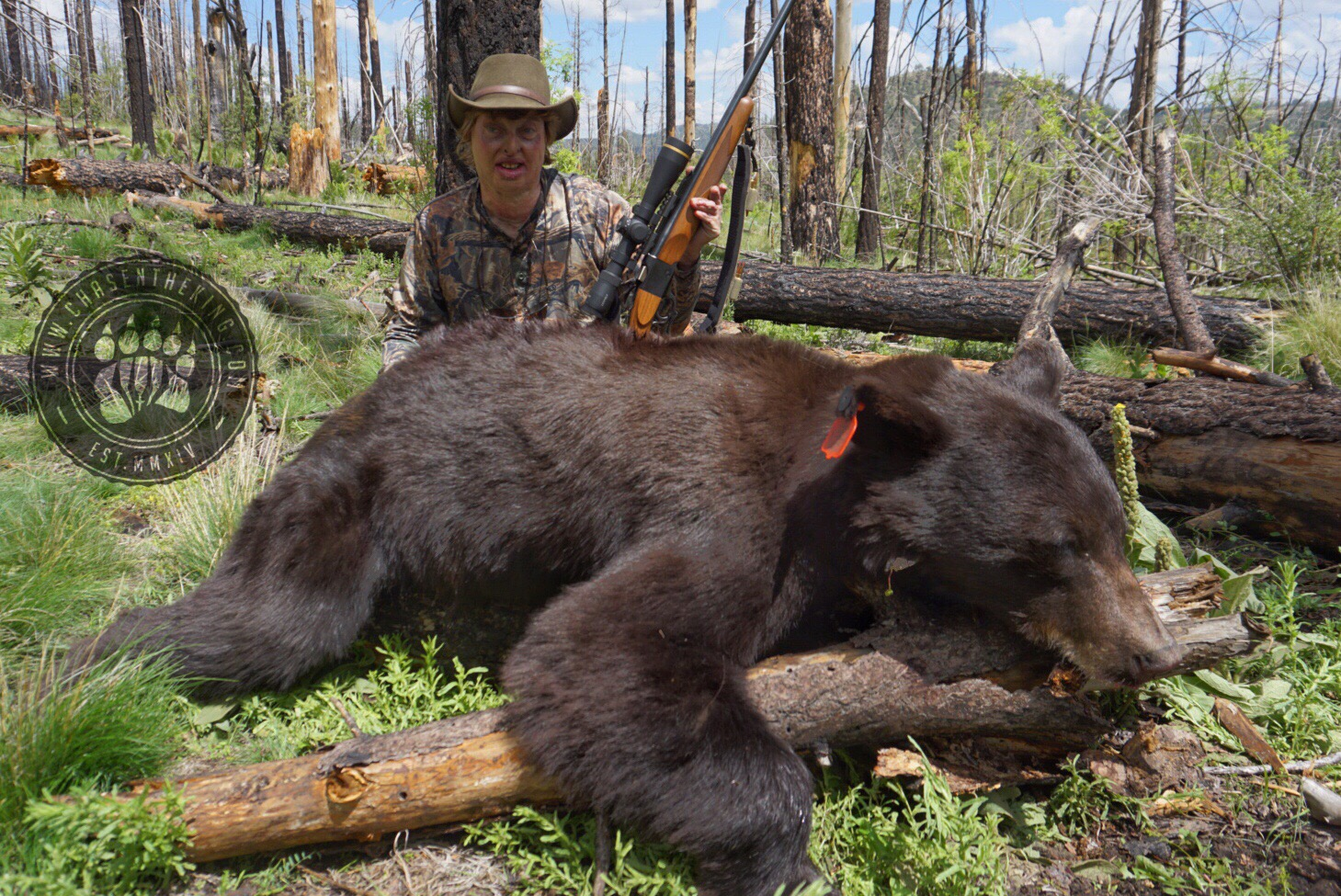 Arizona OTC rifle black bear 29
