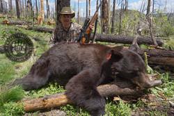Arizona OTC rifle black bear 29