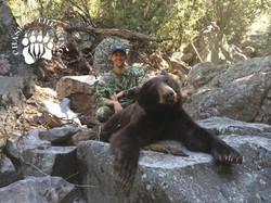 Arizona OTC rifle black bear 47