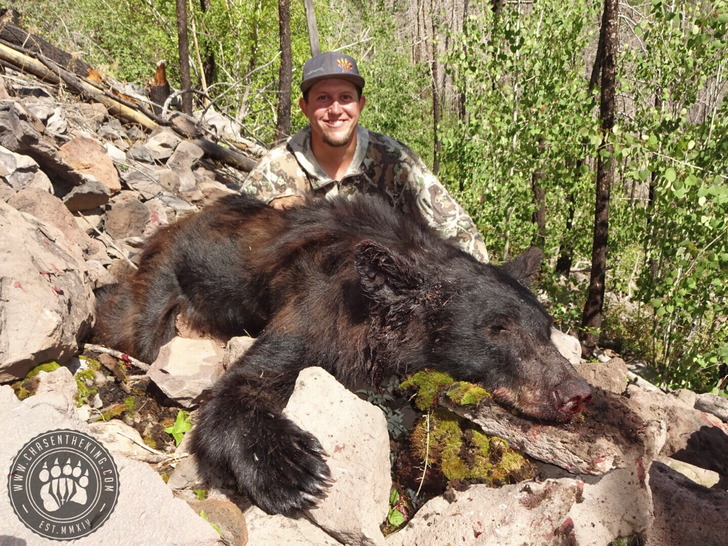 Arizona OTC rifle black bear 31
