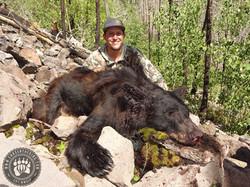 Arizona OTC rifle black bear 31
