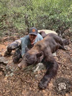 Arizona OTC rifle black bear 19
