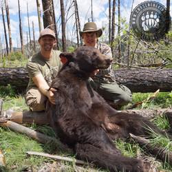 Arizona OTC rifle black bear 25