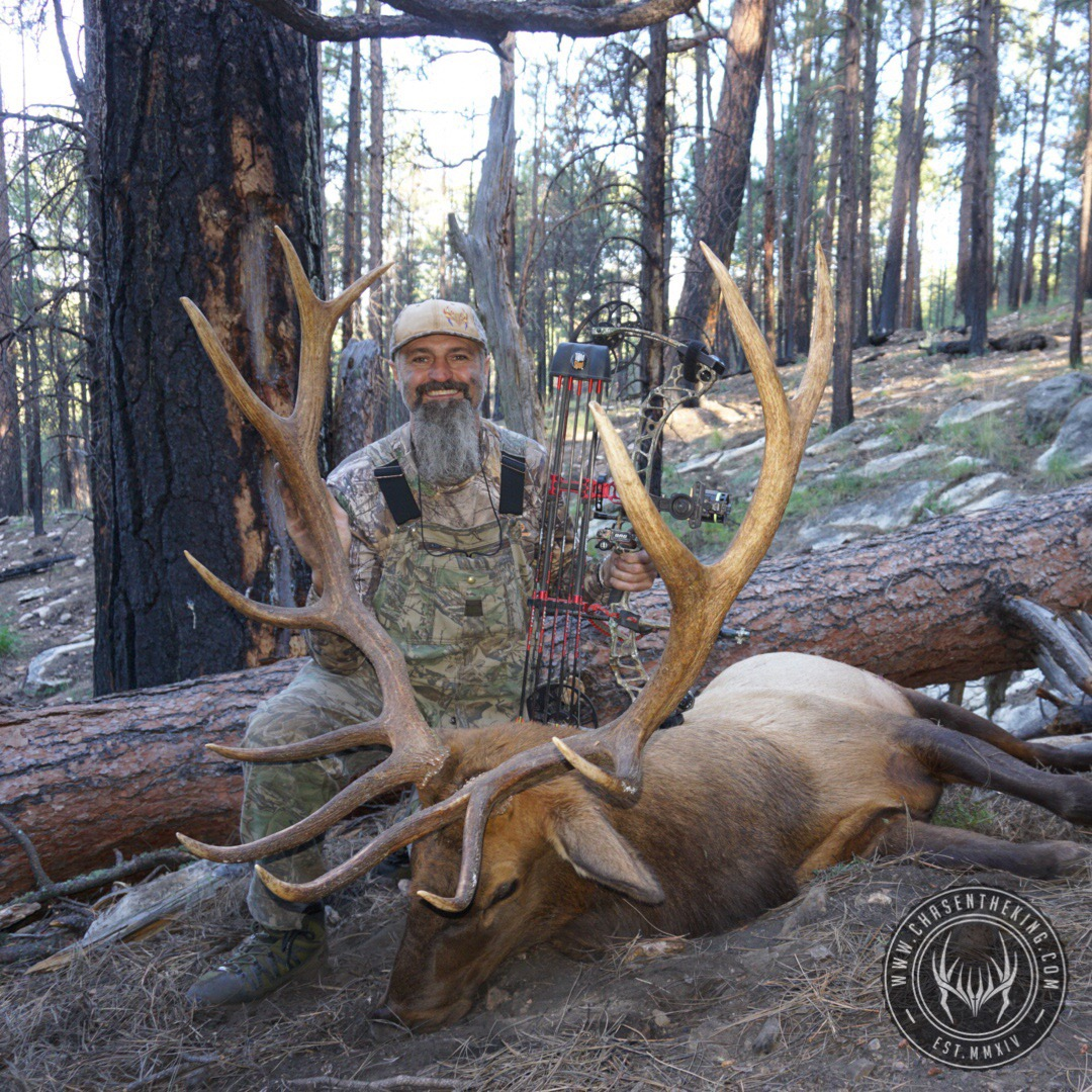 Unit 4B early archery bull elk 4