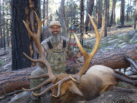 Arizona Elk Hunt Draw: What Units Should I Apply For?