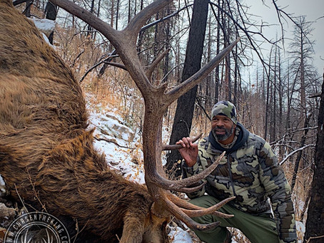 Winter Warrior: 5A Late Rifle Bull Elk