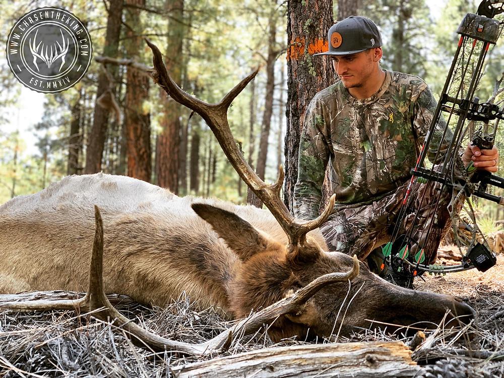 Zach's 4B Archery Bull