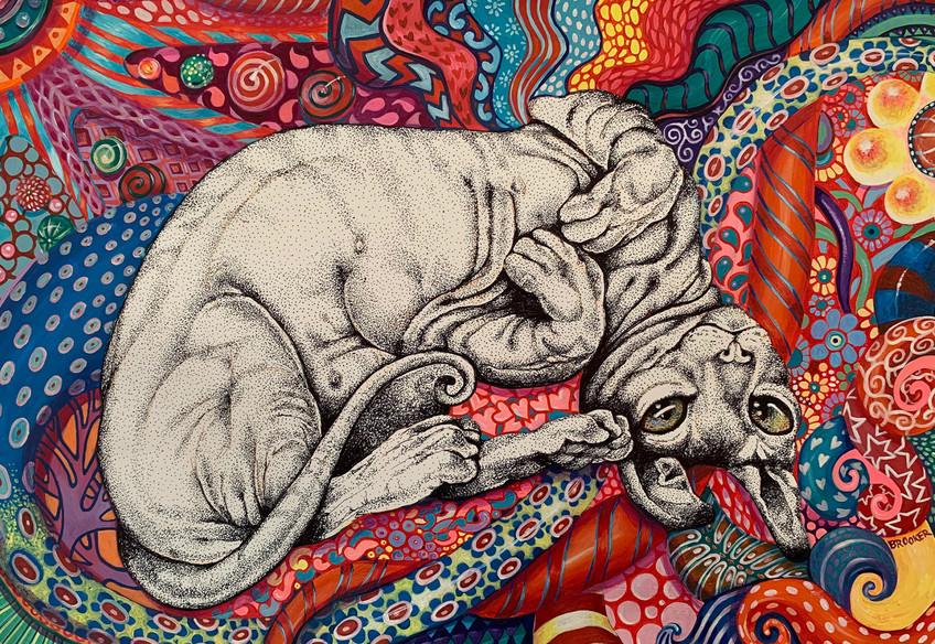 Acid Trippy Cat