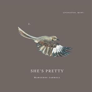 She's Pretty 2 - Album Artwork.jpg