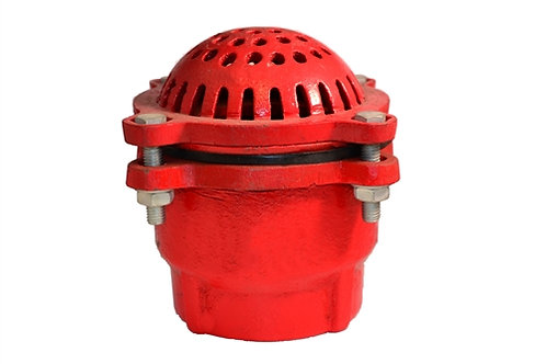 """Foot Valve - 4"""" Female Pipe Threads - Cast Iron - Assembled - Red"""