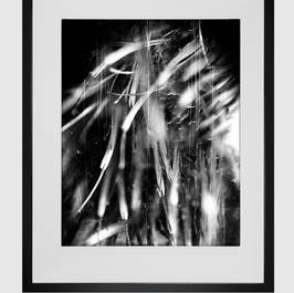 darkroom-print2.jpg