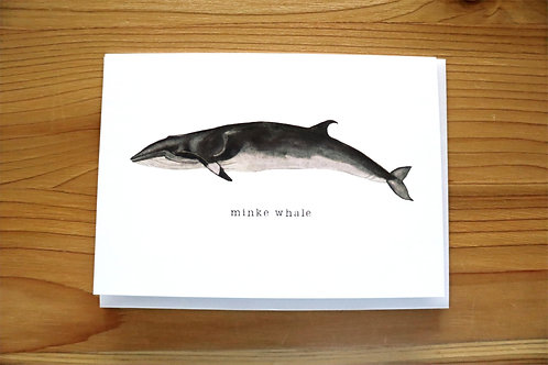 5x7 greeting card - minke