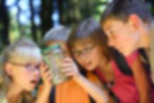 Children looking at bug in jar.jpg