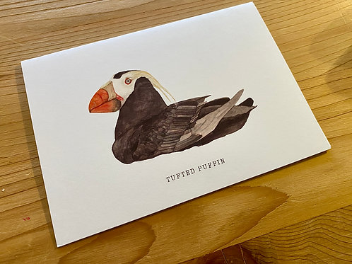 Tufted Puffin Cards