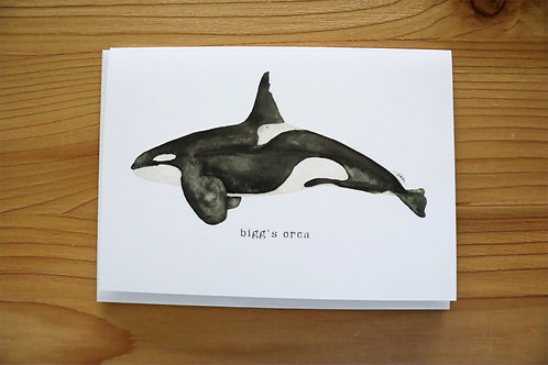 5x7 greeting card - bigg's orca