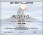 tupu certificate.jpg
