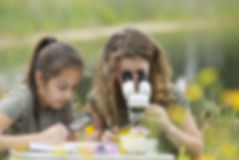 Pretty young girls having outdoor scienc