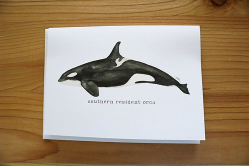 5x7 greeting card - southern resident orca