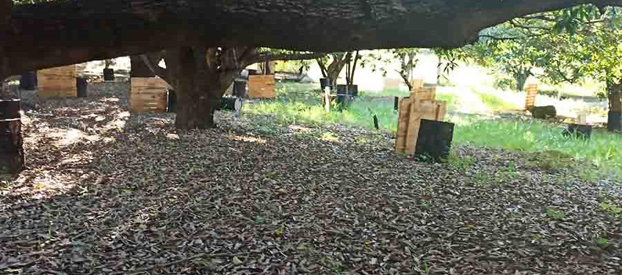 Campo Selva Paintball BH