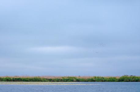The Danube Delta