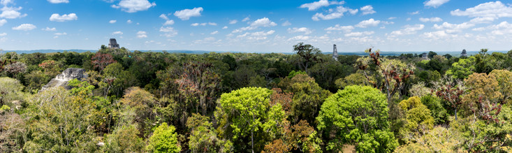 Temples of Tikal