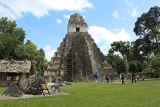 Elmer Alvarado - Tikal VIP Tours 50.JPG