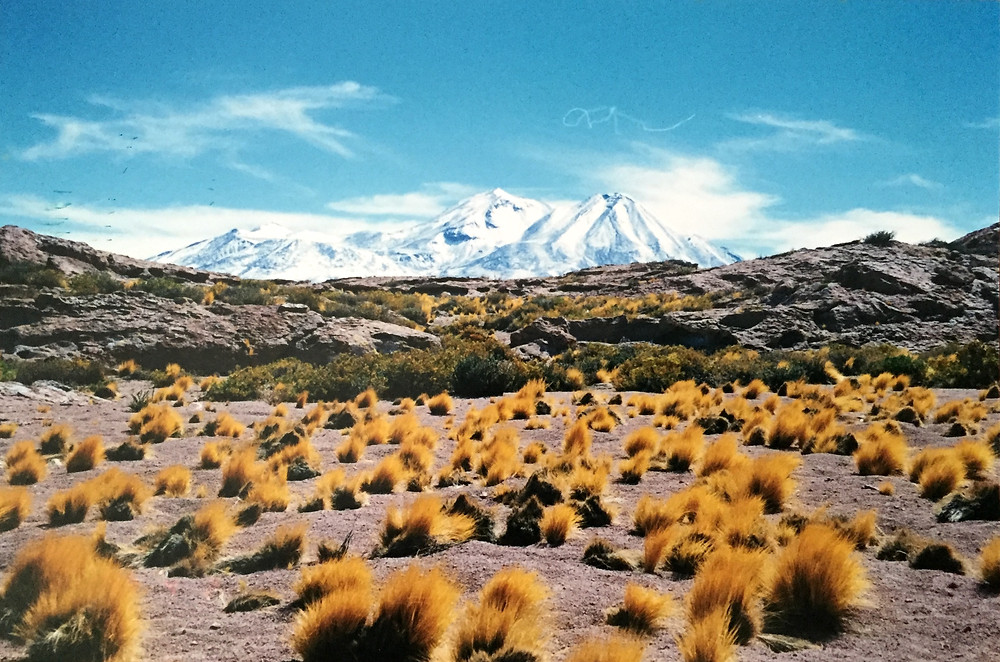 Incredible Chilean highlands © Haley Pope
