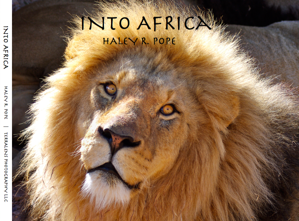 Into Africa Photobook Preview