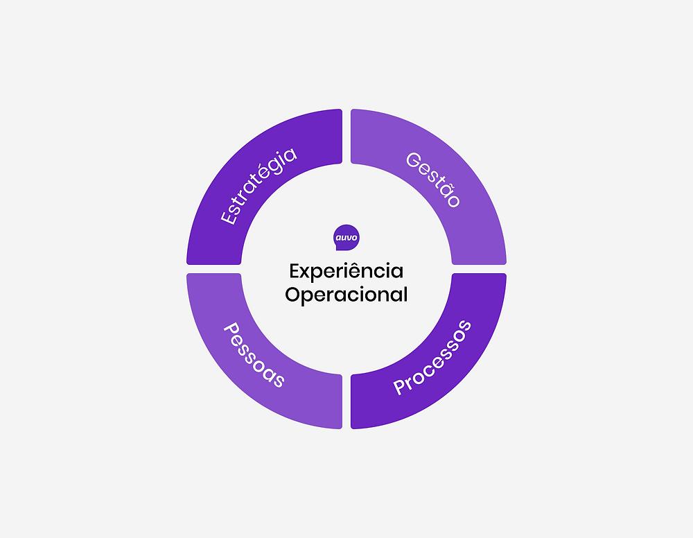 Roda da Experiência Operacional