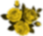 Beautiful_Roses_Clipart_Image.png