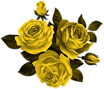 Beautiful_Roses_Clipart_Image (1).png