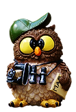 owl-2523260_1920.png