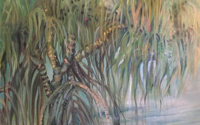 no name (mangrove)
